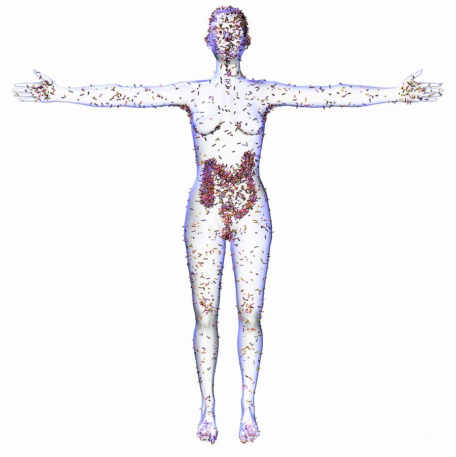 White Background Photograph - Human Microbiome by Russell Kightley/science Photo Library