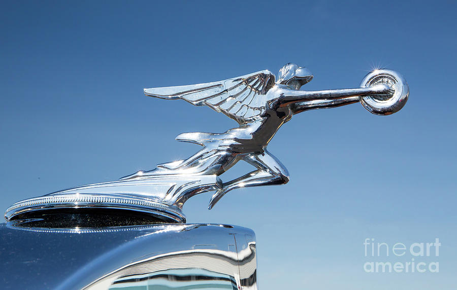 1934 Packard Automobile Hood Ornament by Kevin McCarthy