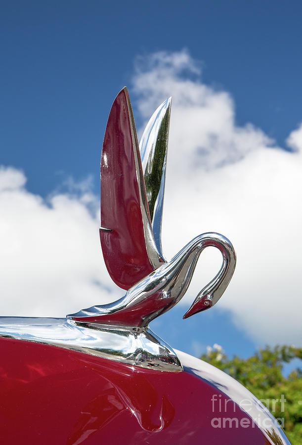 1948 Packard Swan Hood Ornament by Kevin McCarthy