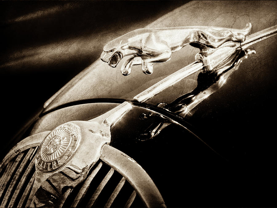 1964 Jaguar Mk2 Saloon Hood Ornament And Emblem-1421bscl Photograph by Jill Reger