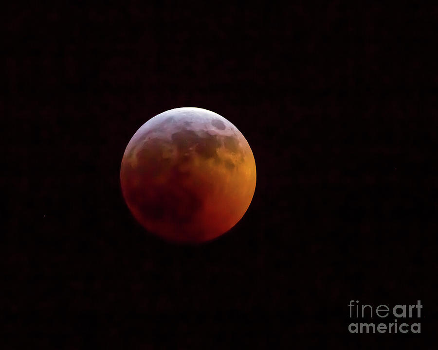2019 Super Blood Wolf Moon by Kevin McCarthy