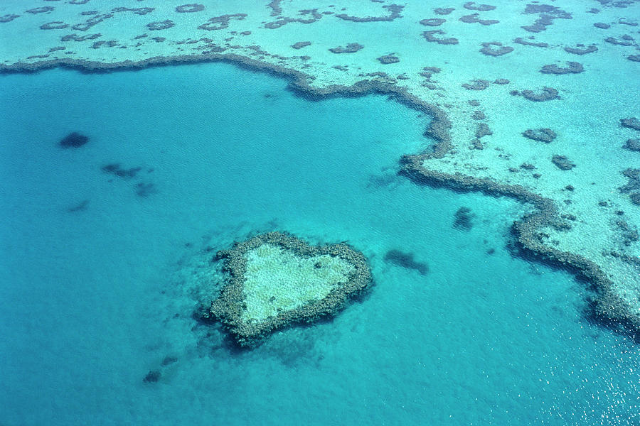 Aerial Of Heart-shaped Reef At Hardy Photograph by Holger Leue