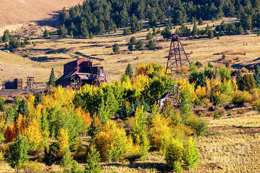 Autumn Leaves In The Mining District Photograph