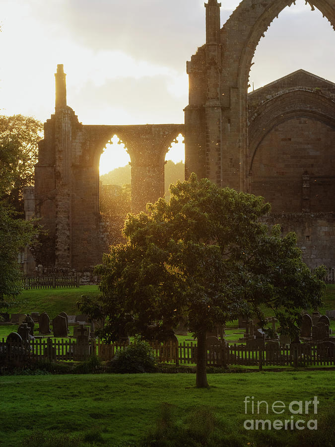 Bolton Abbey Photograph