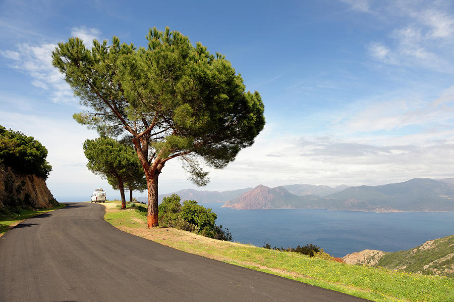 Coastal Road On The Island Of Corsica Photograph by Akrp