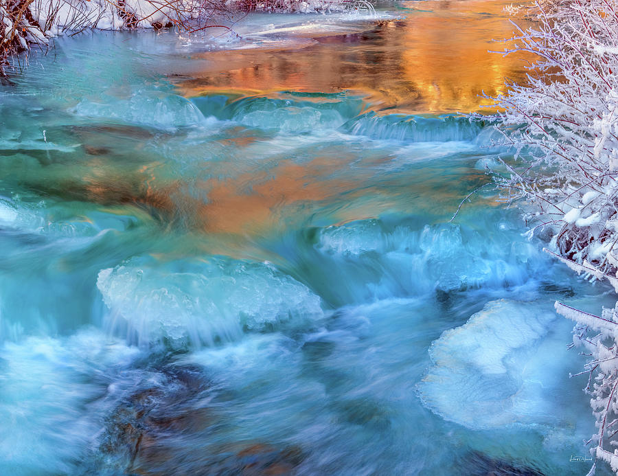 Azure Photograph - Color Of Winter by Leland D Howard