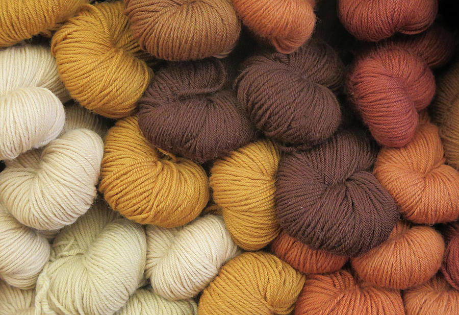 Colored Yarn Photograph - Colored Yarn by Dave Mills