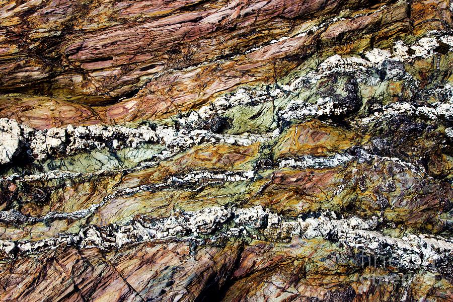 Rock Photograph - Coloured Coastal Rock by Dr Keith Wheeler/science Photo Library