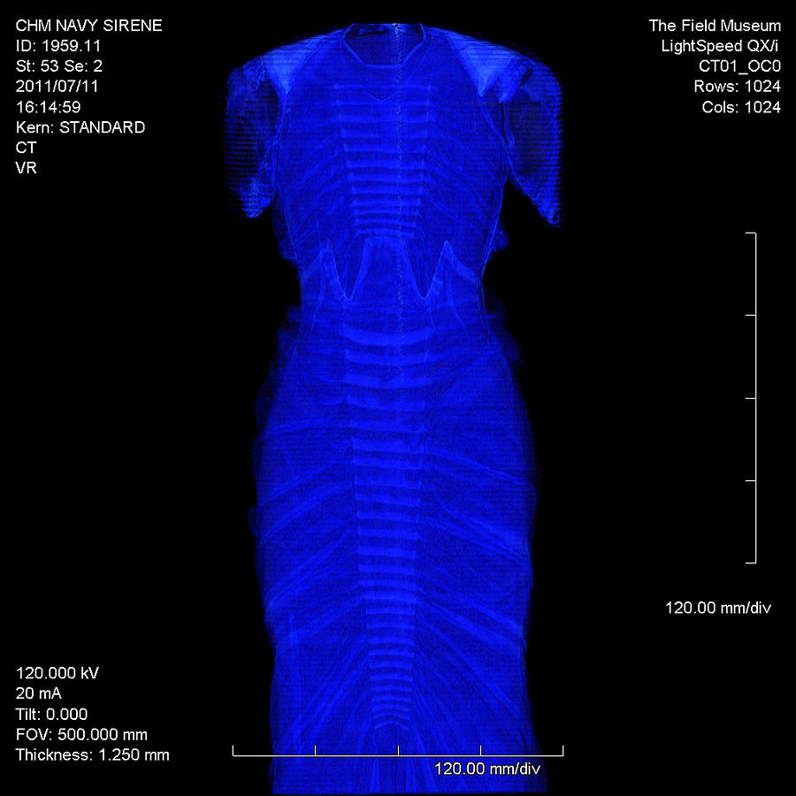 Ct Scan Of La Sirene Evening Dress Photograph by Chicago History Museum