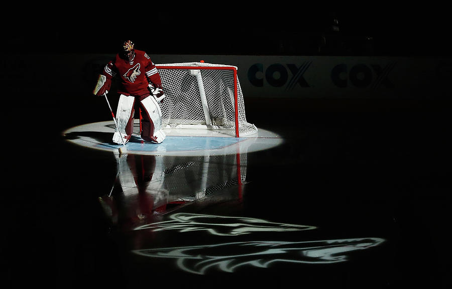 Detroit Red Wings V Arizona Coyotes Photograph by Christian Petersen