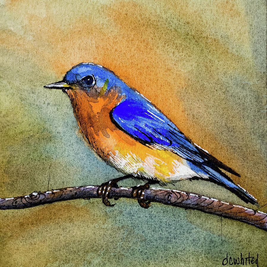 Eastern Bluebird Painting By Dave Whited