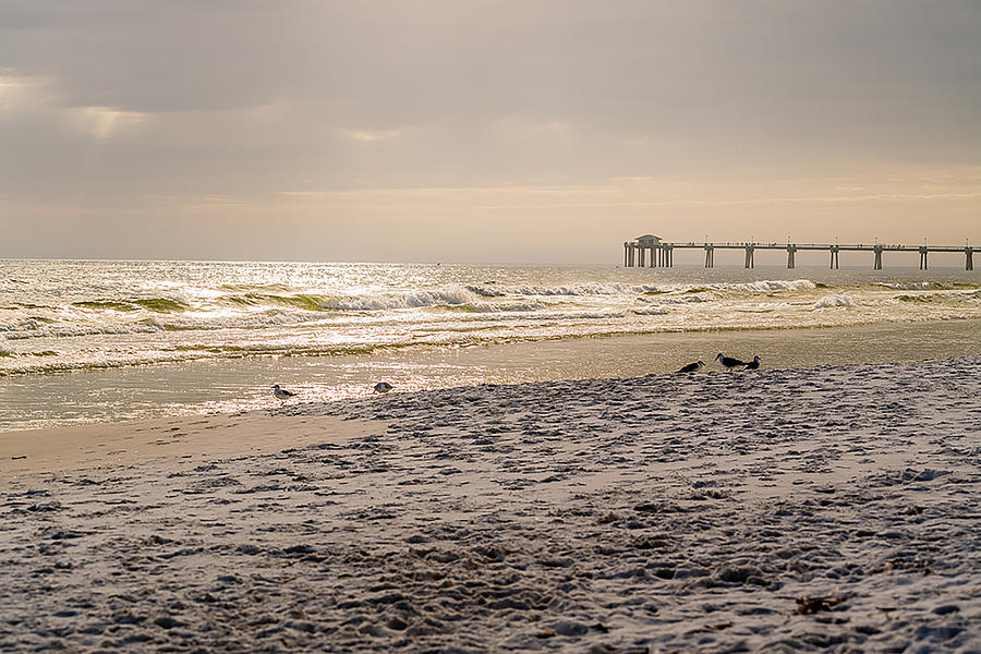 Beach Photograph - Enjoyed The Day by Ric Schafer