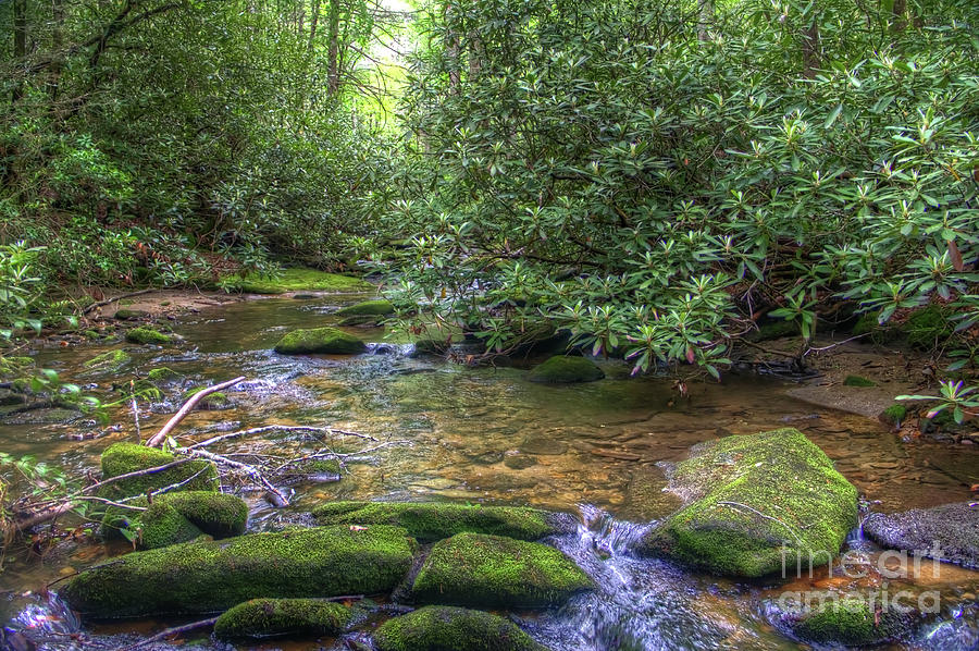 Eno River Photograph - Eno River by James Foshee