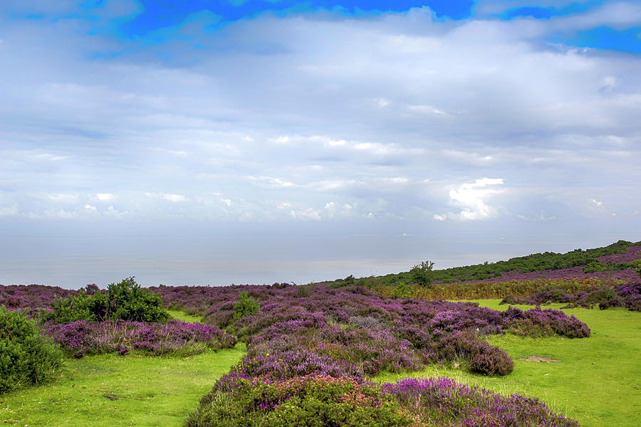 Exmoor by Chris Smith