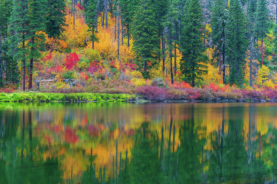 Fall Colors at Tumwater Canyon, WA by Michael Lee