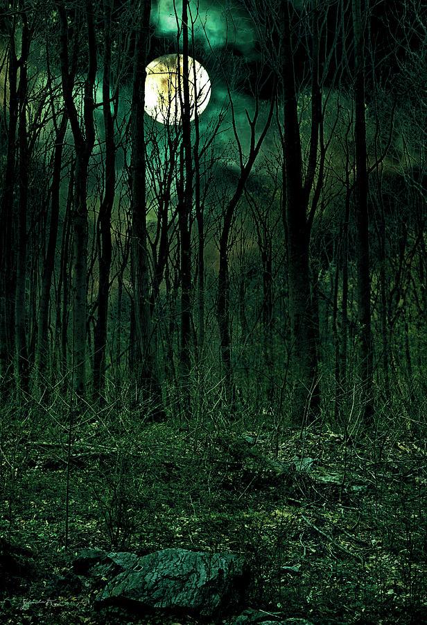 Full Moon by Gerlinde Keating - Galleria GK Keating Associates Inc