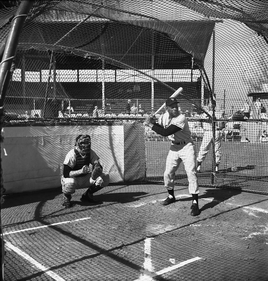 Giants Spring Training Photograph by Michael Ochs Archives