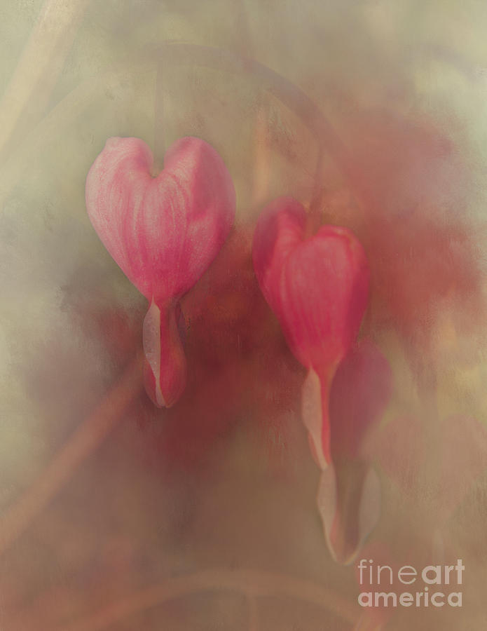 2 Hearts by Pam  Holdsworth