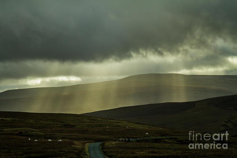 Heavenly Rays by Sandra Cockayne ADPS