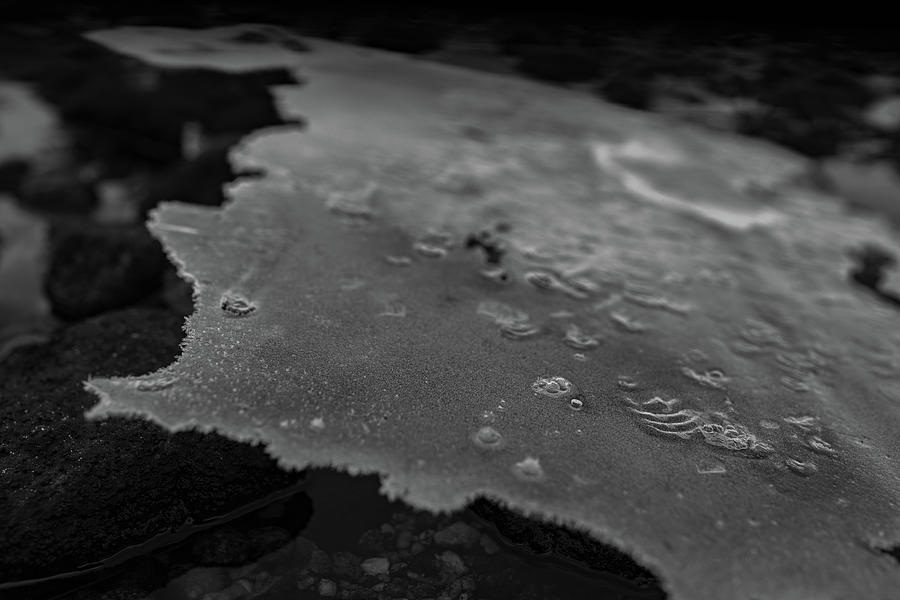 Norway Photograph - Ice Layer On The Seafloor by Kai Mueller