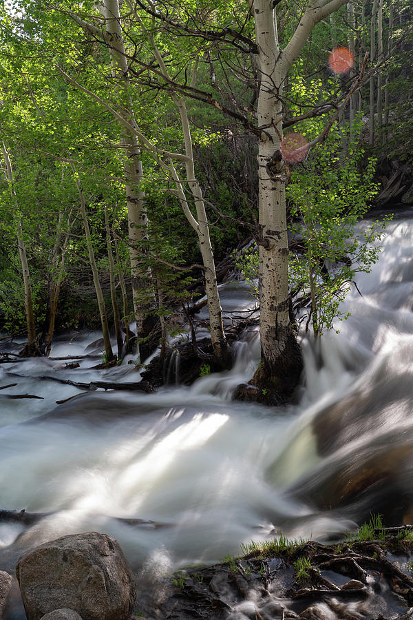Long Exposure Shot of a Mountain Stream by Kyle Lee