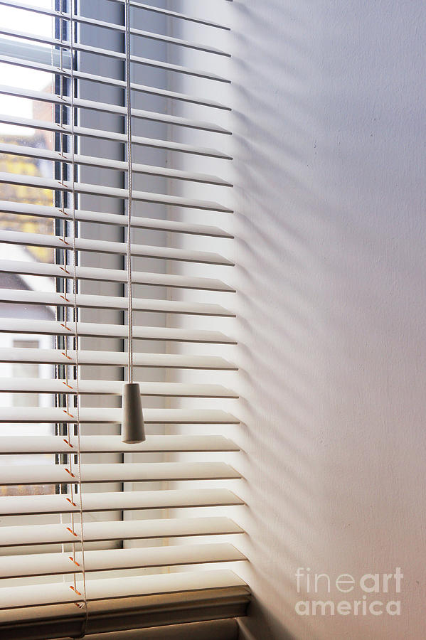 Background Photograph - Modern Window Blind by Tom Gowanlock
