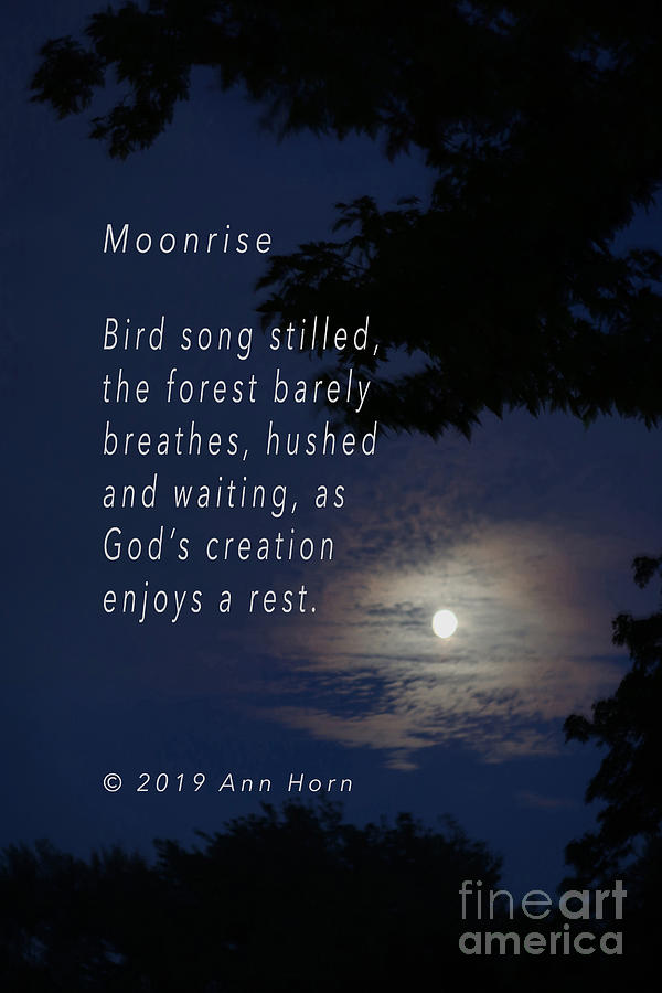 Moonrise Photograph