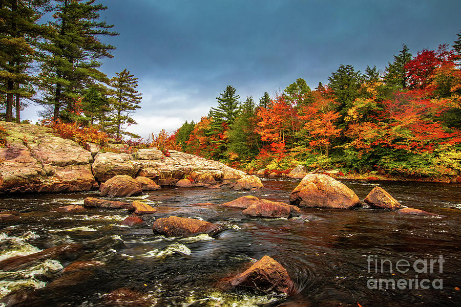 Moose River by Roger Monahan