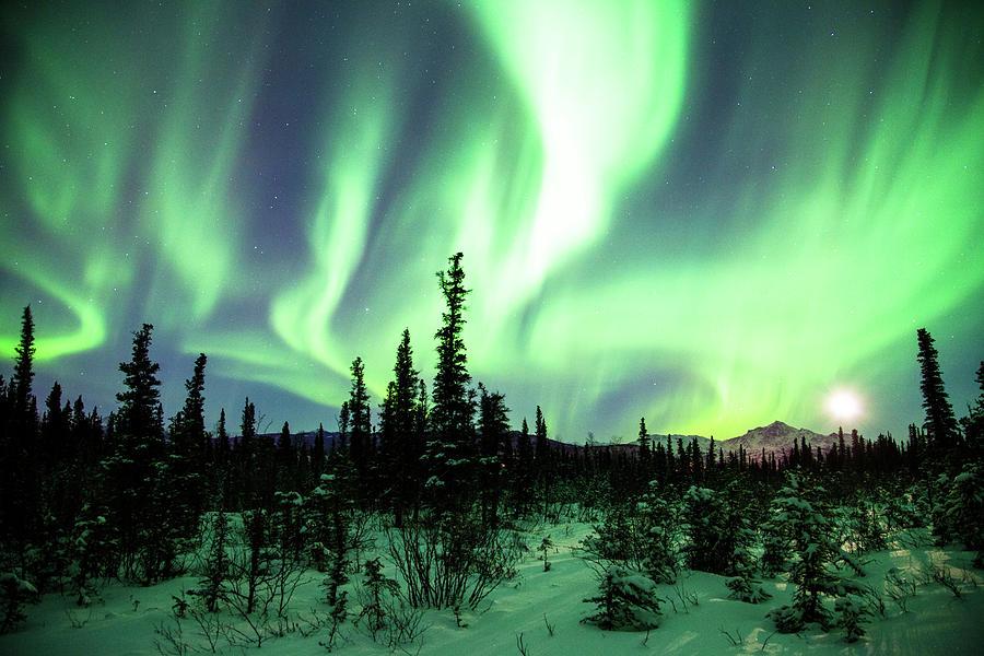 Northern Lights Photograph by Daniel A. Leifheit