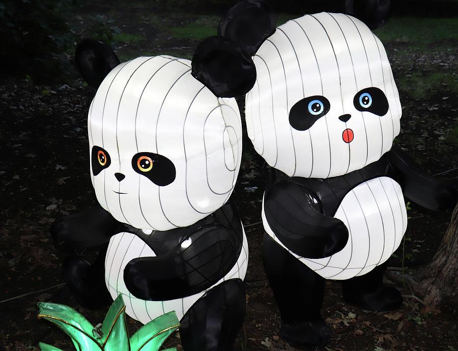 2 Pandas by Ron Roberts