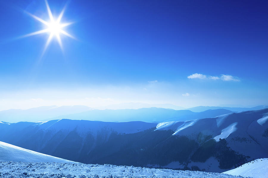 Polar Sunshine Photograph by Yourapechkin