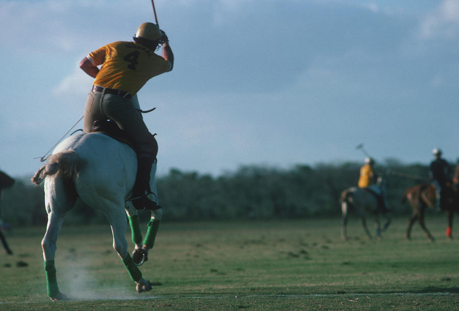 Polo Match Photograph by Slim Aarons