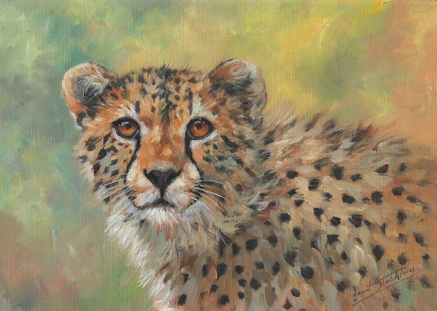 Portrait of a Cheetah by David Stribbling