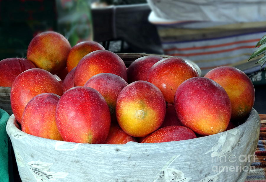 Ripe Red Mangoes for Sale by Yali Shi