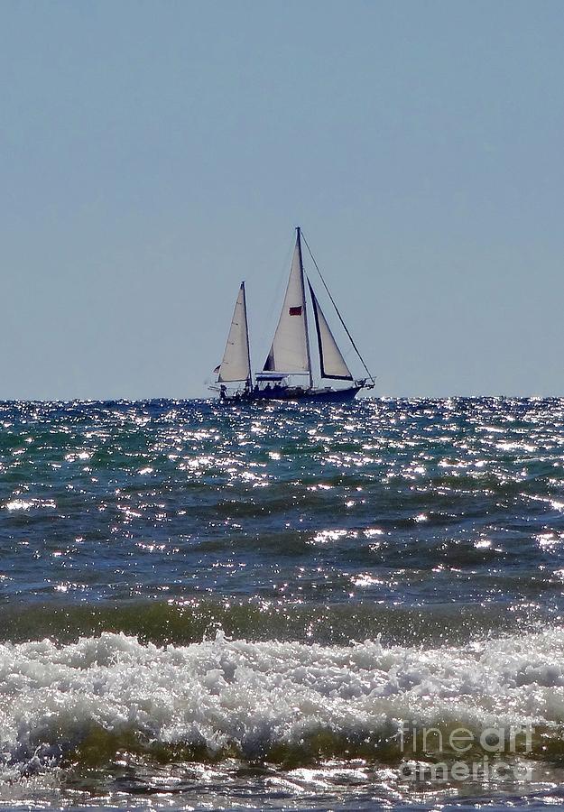 Sailboat Photograph - Sailboat  by Megan Cohen