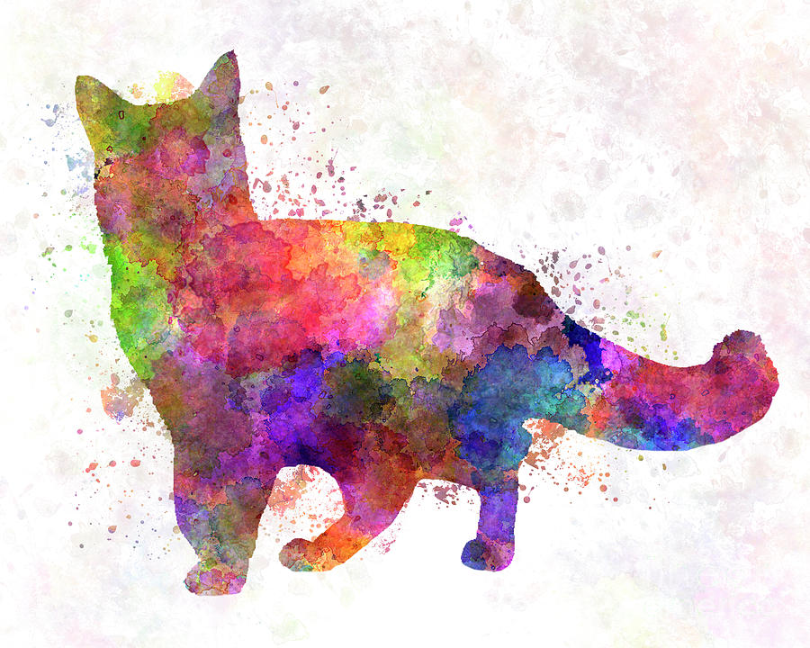 Somali cat in watercolor by Pablo Romero