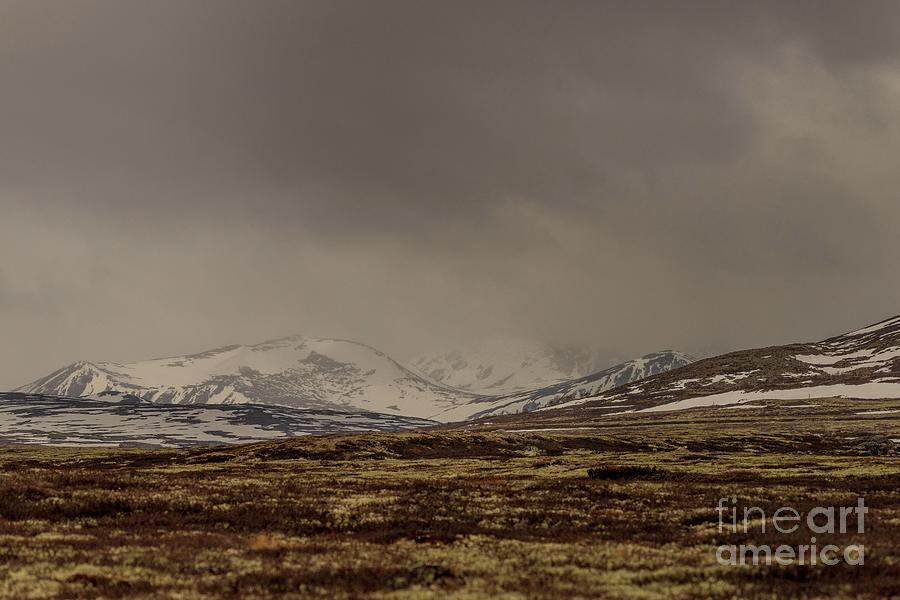 Snow Photograph - Silence by Tomasz Slawinski