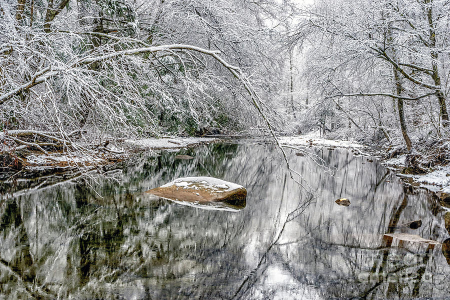 Snow along Cranberry River by Thomas R Fletcher