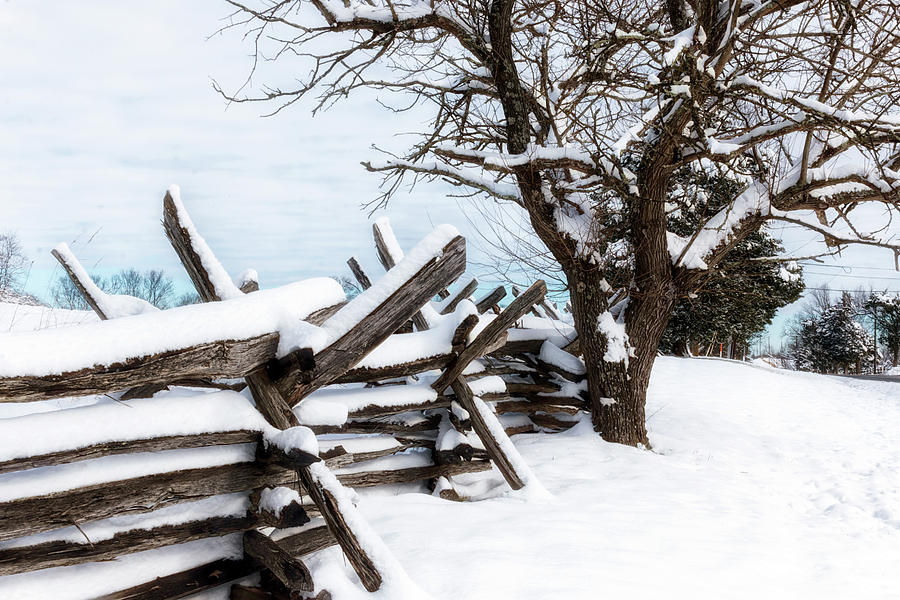 Split-Rail Fence by Travis Rogers
