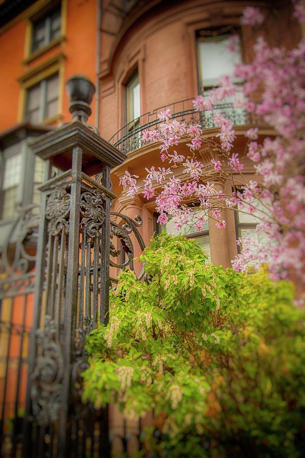 Spring in Boston Back Bay by Joann Vitali