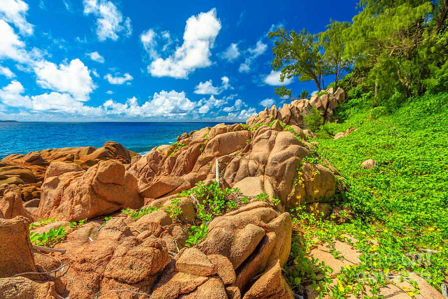 Seychelles Photograph - Swimming Pool La Digue by Benny Marty