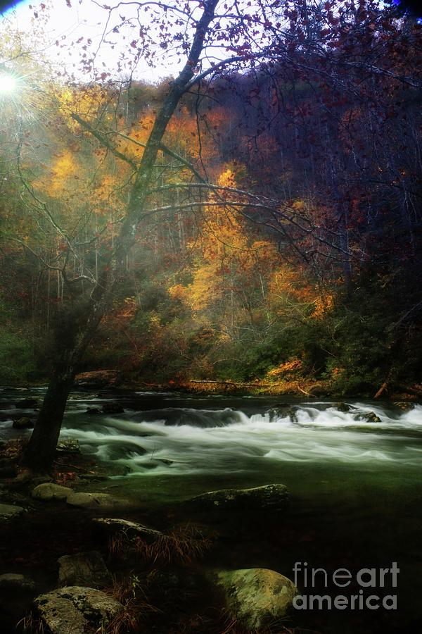 Tellico River Tennessee 5 by Rick Lipscomb