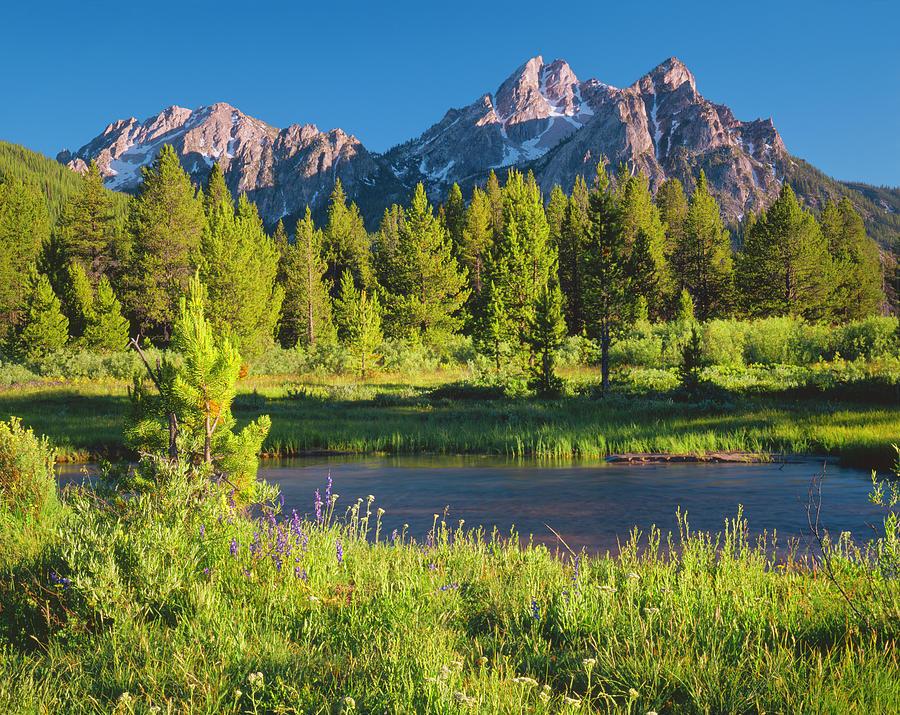 The Sawtooth Mountain Range, Stanley Photograph by Ron thomas