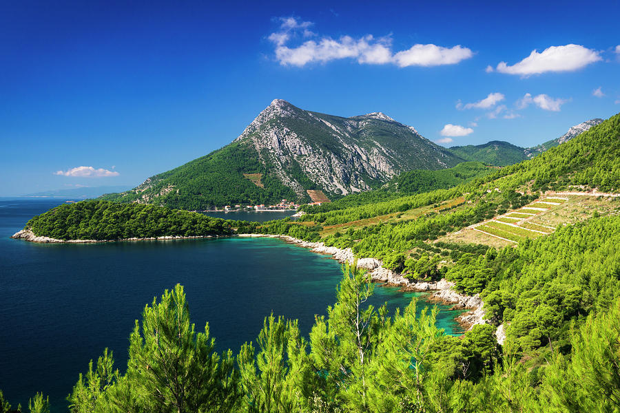Adriatic Photograph - The Village Of Trstenik On The Peljesac by Russ Bishop