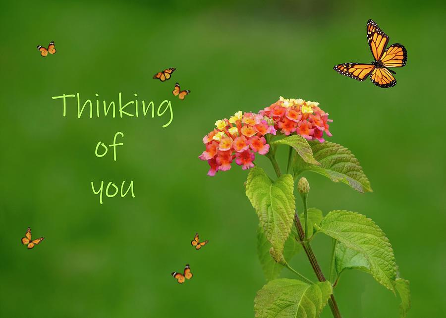 Thinking Of You by Cathy Kovarik