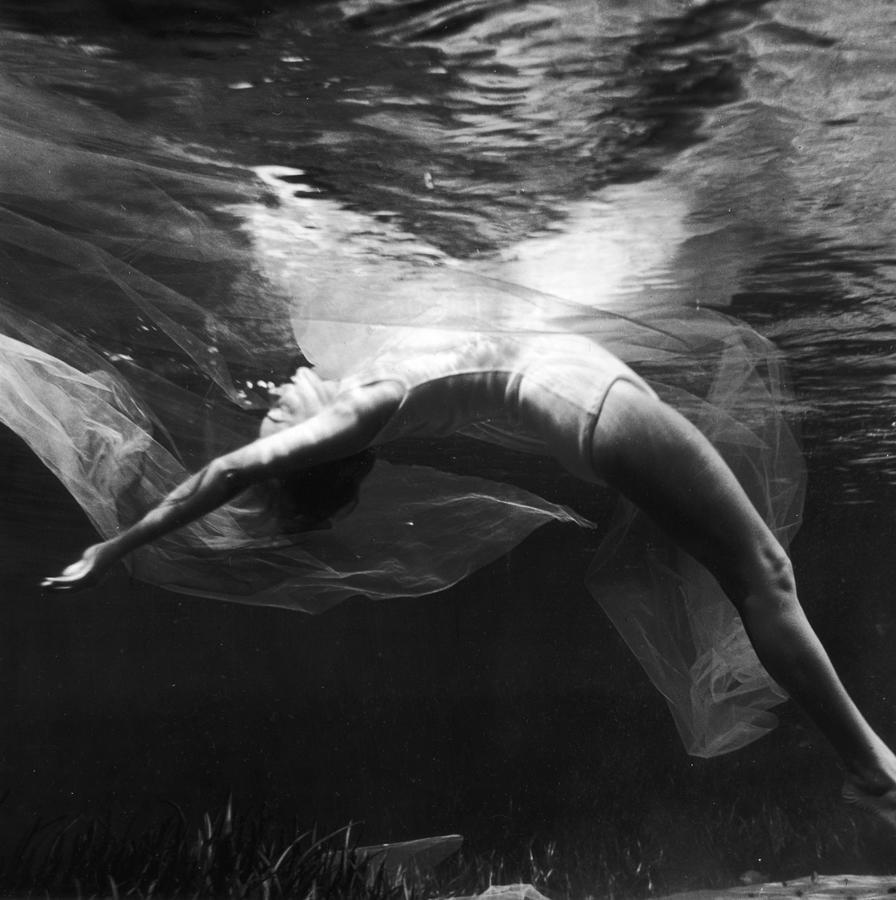Underwater Ballet Photograph by Bruce Mozert