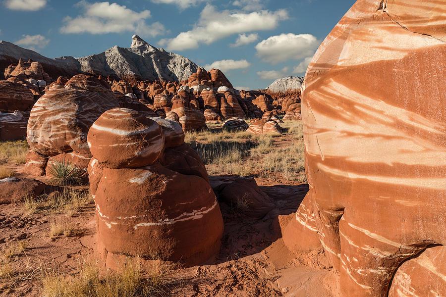 Adam Jones Photograph - Unique Hoodoo Formations Of Blue Canyon by Adam Jones