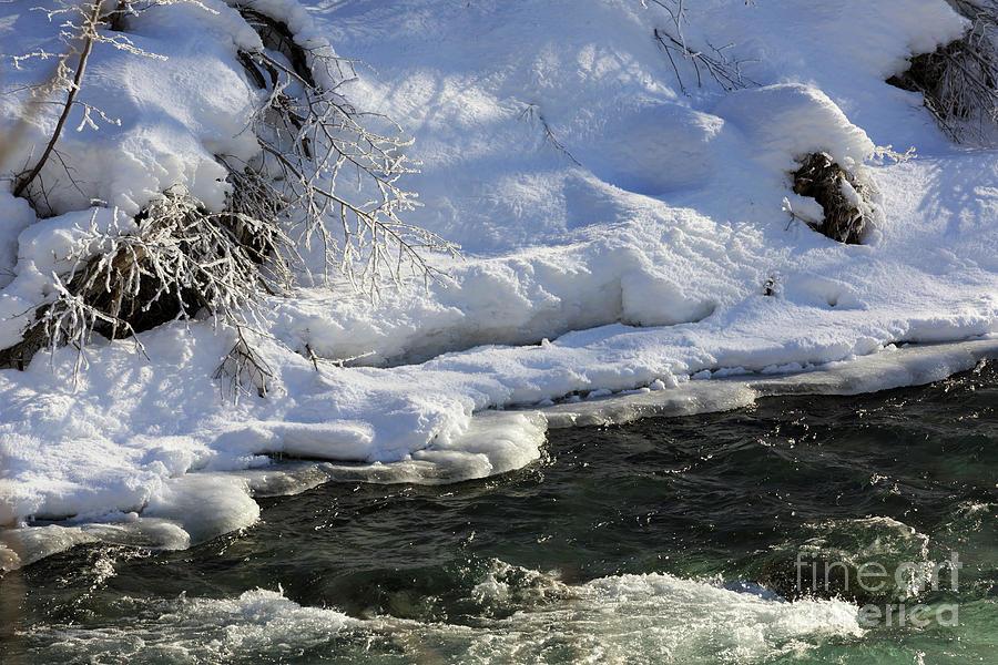 Winter stream near Hope on the Kenai Peninsula Alaska by Louise Heusinkveld