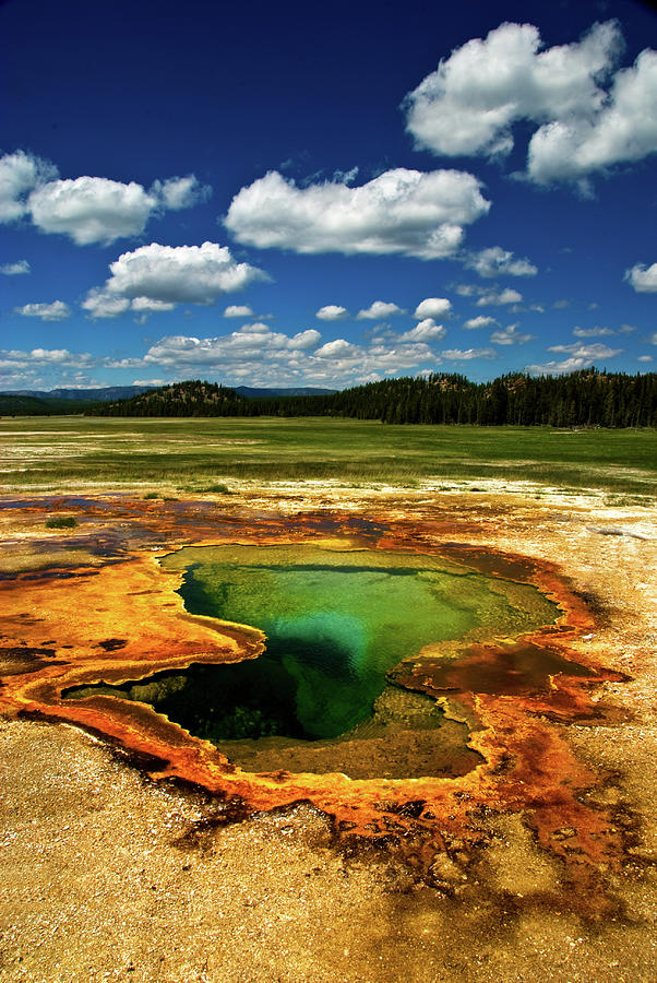 Yellowstone Thermal Pool Photograph by Bill Wight Ca