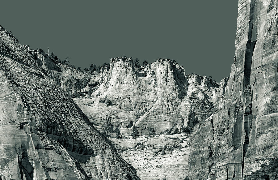 Zion National Park by Phil Cardamone